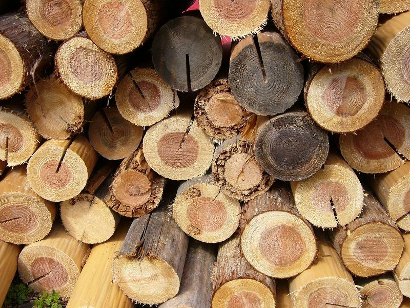 タナカの徒然日記 ~木材の話~