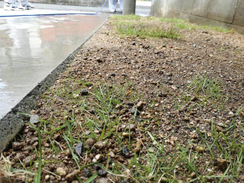 リフォーム工事記録【note3:芝生を植えたい】
